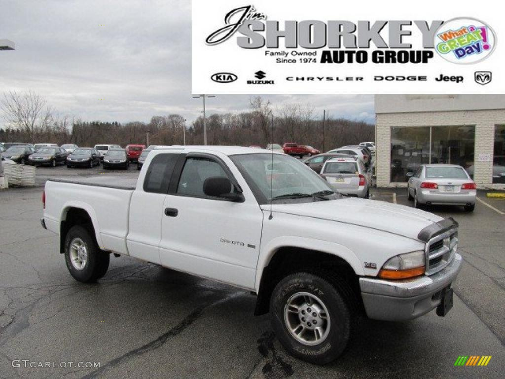 Bright White Dodge Dakota